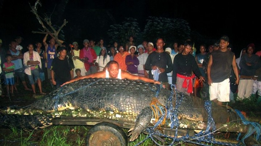 "Sept. 4, 2011 FILE photo, residents of Bunawan, southern Philippines with a huge crocodile, named ""Lolong""  measuring 20.24 feet."