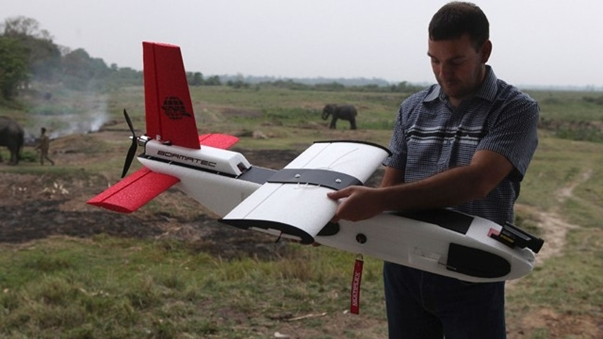 April 8, 2013: A mahout walks past with an elephant used for tourist rides as Remo Peduzzi, Managing Director, Research Drones LLC Switzerland prepares to fly an unmanned aircraft or drone at the Kaziranga National Park at Kaziranga in Assam state, India.