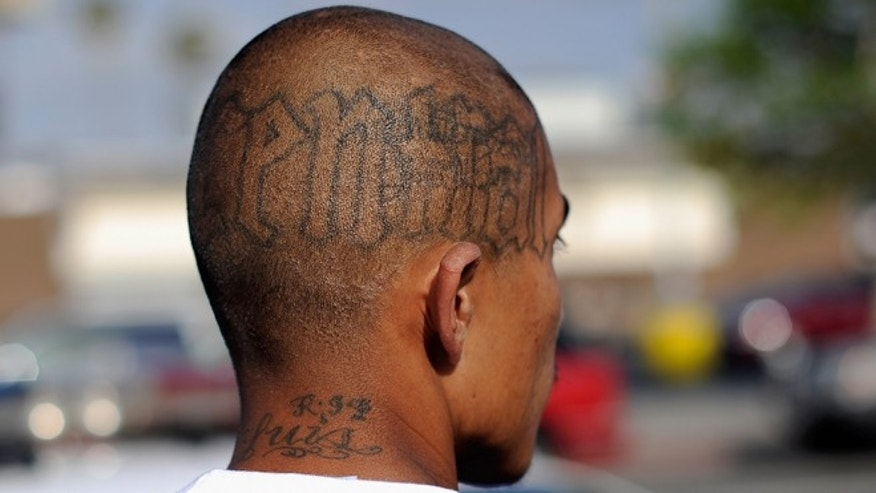 "LOS ANGELES, CA - APRIL 29:  Tattoos are seen on the head of a twenty-year old ""Street Villains"" gang member who was arrested by Los Angeles Police Department officers from the 77th Street division on April 29, 2012 in Los Angeles, California. The 77th Street division patrol the same neighborhood that truck driver Reginald Denny was nearly beaten to death by a group of black assailants at the intersection of Florence and Normandie Avenues. It?s been 20 years since the verdict was handed down in the Rodney King case that sparked infamous Los Angeles riots.  (Photo by Kevork Djansezian/Getty Images)"