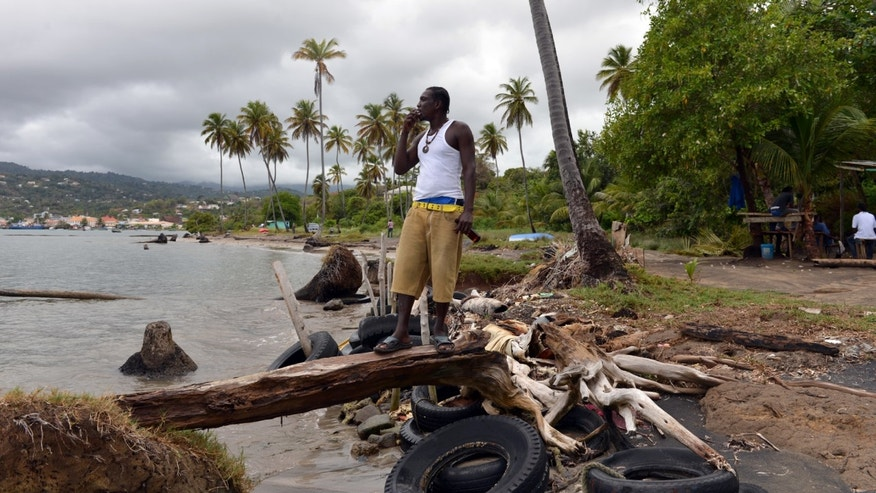 In this April 22, 2013 photo, fisherman Desmond Augustin stands on a breakwater of old tires and driftwood that local residents fashioned to try and protect their fishing village in Telegraph, Grenada. The people along this vulnerable stretch of eastern Grenada have been watching the sea eat away at their shoreline in recent decades, a result of destructive practices such as sand mining and a ferocious storm surge made worse by climate change, according to researchers with the U.S.-based Nature Conservancy, who have helped locals map the extent of coastal erosion. (AP Photo/David McFadden)