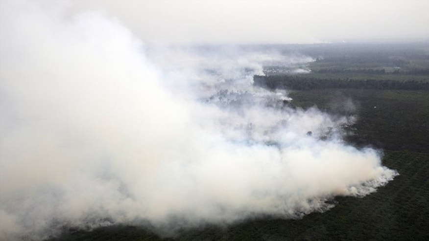 "Thick smoke from raging forest fires rises in Pelalawan regency in Riau province located in Indonesia's Sumatra island on June 21, 2013. African palm oil producers are hitting back at what they say is a ""smear campaign"" against them by environmentalists and health activists that risks ruining their industry."