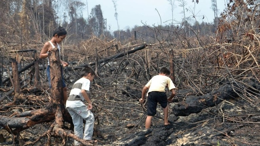 Indonesian children play on a burned peatland forest in Dumai, Riau province, on Sumatra island, June 28, 2013. Southeast Asian nations urged Indonesia Sunday quickly to ratify a treaty aimed at preventing fires in its giant rainforests that regularly inflict choking smog on its neighbours.