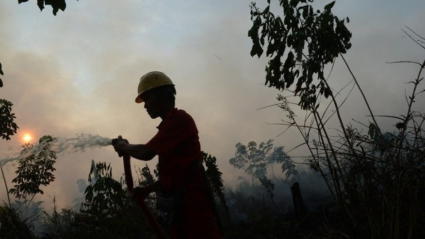 An Indonesian worker extinguishes a forest fire on June 29, 2013 on Sumatra island. Fires across giant Indonesian rainforests caused Southeast Asia's worst air pollution crisis in years.