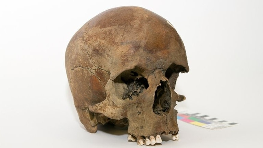 A centuries-old skull found in northern New South Wales in late 2011, in Canberra. The skull of a white man is raising questions about whether Captain James Cook really was the first European to land on the country's east coast.