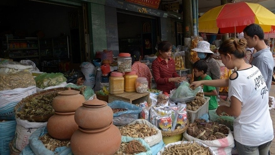 People buy traditional medicine at a shop in Phnom Penh on June 23, 2013. Some 80 percent of Cambodia's population live in rural areas, often in villages with no doctors, let alone a hospital.