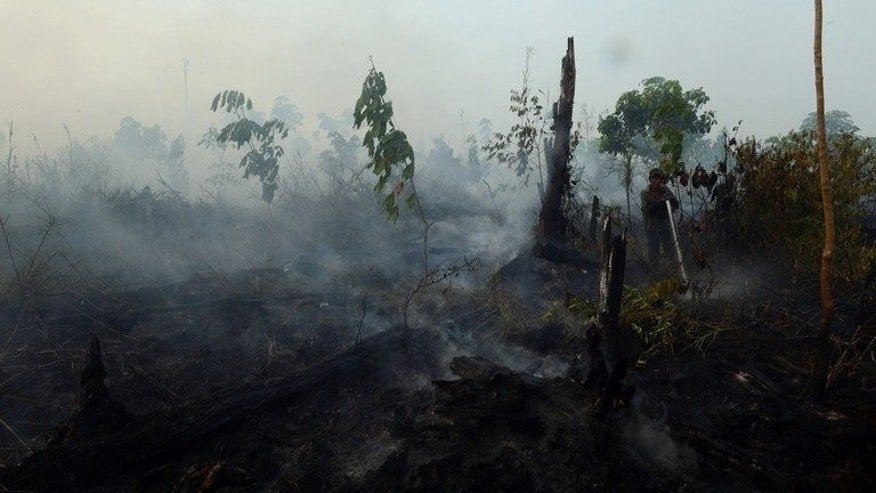 An Indonesian worker from a palm oil concession company extinguishes a forest fire on Sumatra island, June 29, 2013. While the blazes last month cloaked Singapore and Malaysia in toxic haze and provoked howls of outrage from environmental groups, many on Sumatra, from plantation workers to villagers like Saparina, are die-hard supporters of using fires to clear land.
