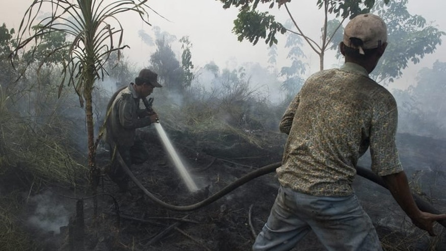 Indonesian workers from a palm oil company extinguish a forest fire in Kampar district, on Sumatra island, June 29, 2013. This year's fires pushed haze to record levels in Singapore, forcing residents to don facemasks and stay indoors. They also raised diplomatic temperatures, with both Singapore and Malaysia calling on Indonesia to do more to stop the problem.