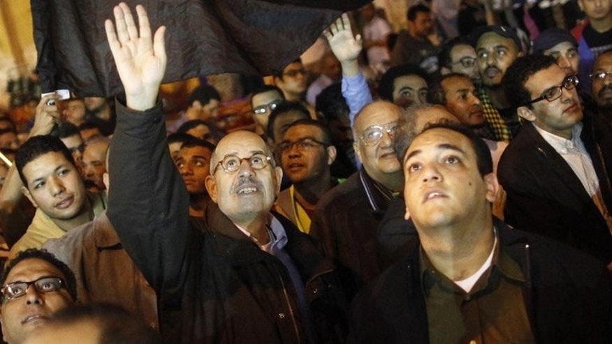 Mohammed el Baradei leads a march on November 27, 2012 at Egypt's Tahir Square in Cairo. ElBaradei, who was named as Egypt's new prime minister on Saturday, is a former head of UN nuclear watchdog the International Atomic Energy Agency.