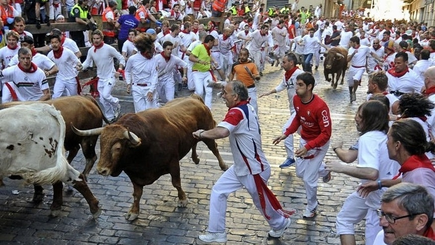 People run in front of Alcurrucen's bulls during the first bull run of the San Fermin Festival, on July 7, 2013, in Pamplona, northern Spain. Huge crowds of thrill-seekers got a scare as they fled half-tonne, sharp-horned fighting bulls charging through the city, resulting in four light injuries.