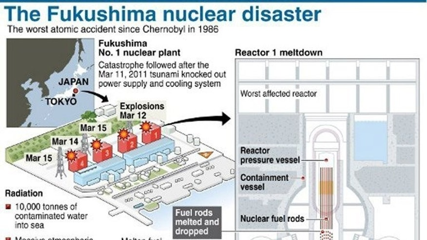 Graphic on the March 11, 2011 nuclear disaster at Japan's Fukushima power station. Japan's nuclear watchdog has said the crippled Fukushima reactors are very likely leaking highly radioactive substances into the Pacific Ocean.