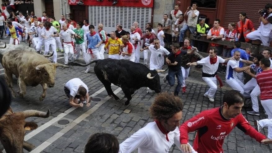 Participants run in front of bulls during the San Fermin Festival in Pamplona, northern Spain, on July 11, 2013.