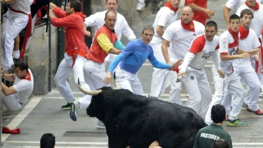 A man is tossed to the ground by a bull at the San Fermin Festival in Pamplona, northern Spain on July 12, 2013. Three men were gored by half-tonne bulls as they raced through the city, in the bloodiest run of this year's festival.
