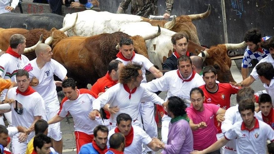 Participants run in front of El Pilar's steers at the San Fermin Festival in Pamplona, northern Spain on July 12, 2013. Three men were gored by half-tonne bulls as they raced through the city, in the bloodiest run of this year's festival.