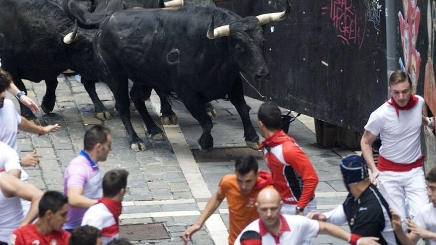 Participants run in front of the bulls during the San Fermin Festival in Pamplona, northern Spain, on July 13, 2013.