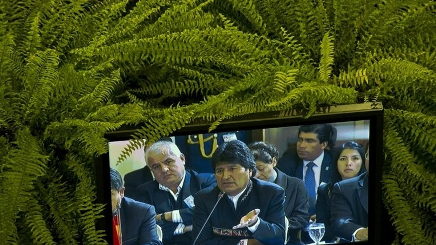 Bolivia President Evo Morales is seen on a screen as he delivers his speech during the XLV Mercosur Summit, in Montevideo on July 12, 2013. South American leaders defended their right to offer asylum Friday, venting anger at claims of US spying in the region while intelligence leaker Edward Snowden's fate hangs in the balance.
