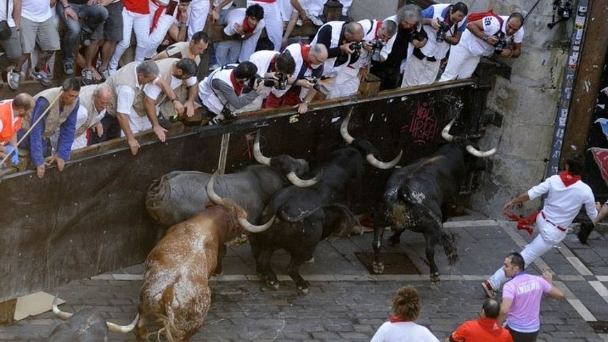 Participants run in front of bulls during the last bull run of the San Fermin Festival in Pamplona, northern Spain, on July 14, 2013. Spain's Pamplona bull-running fiesta has wrapped up with another five seriously injured, including an Australian woman who was gored, after nine days that landed a total of 50 daredevils in hospital.