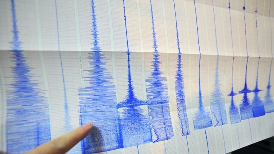 A man points at a seismic chart at the Central Weather Bureau in Taipei on March 4, 2010. A 5.8-magnitude earthquake rocked central New Zealand early Sunday, but there were no immediate reports of serious damage, officials said.
