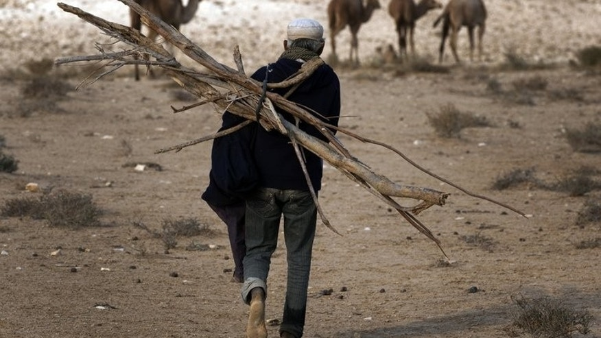 A Bedouin carries wood on his back as he walks barefoot back to his tent in the Negev desert near the southern Israeli city of Beer Sheva, on December 30, 2010. UN human rights chief Navi Pillay on Thursday slammed Israeli plans to resettle up to 40,000 Bedouin and demolish 40 villages in the Negev region, urging the government to reconsider them.