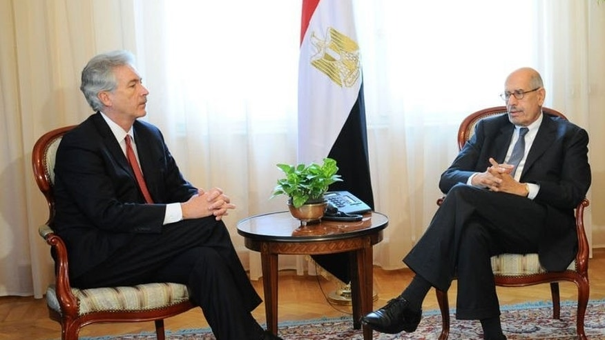 Egypt's Vice President Mohamed ElBaradei (R) holds talks with US Deputy Secretary of State William Burns at the presidential palace in Cairo, August 3, 2013.