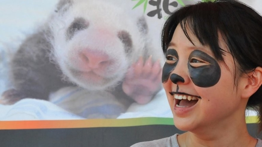 "A girl smiles after having her face painted with a panda pattern at the Taipei City Zoo on August 4, 2013. Taipei zoo held a ""baby-shower"" party Sunday to celebrate the one month birthday of the first panda born in Taiwan as the cub continues to be a star attraction even though she has yet to appear in public."