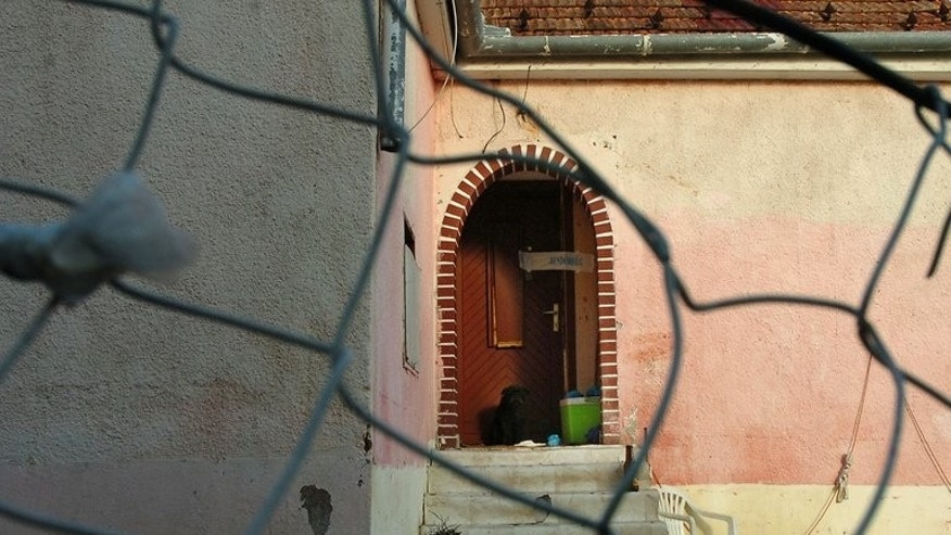 A dog sits in front of the door of a Roma home after a grenade attack killed two adults and injured two children there, in Pecs, some 200 kms south of Budapest, on November 19, 2008. Four Hungarian men were found guilty Tuesday of killing six Roma including a five-year-old child in a wave of brutal racially-motivated attacks between 2008 and 2009.