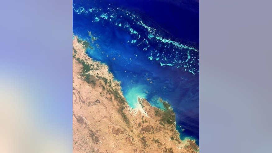 Image taken by NASA's MISR on August 26, 2000 shows the Great Barrier Reef, which extends for some 2,300 kilometres. Dwarf minke whales have been tagged and tracked in the Great Barrier Reef in a pilot study which hopes to solve the mystery of where they spend the summer.