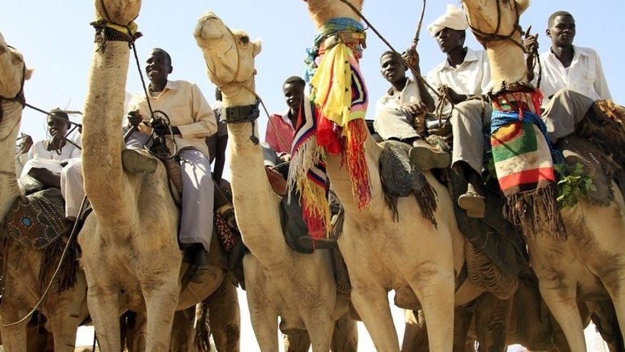 Sudanese men sit on camels in the Shangil Tobaya area for displaced people in North Darfur state on June 18, 2013. Janjaweed militia in Sudan's Darfur region kidnapped more than 20 members of a tribe fleeing deadly inter-ethnic violence, prompting their group to boycott a ceasefire process, a local leader said Sunday.