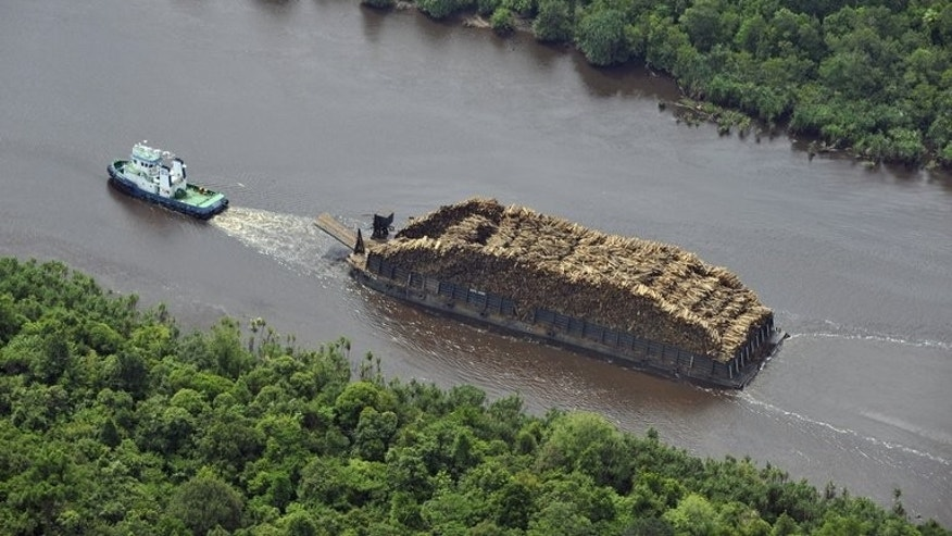 A tugboat pulls a barge loaded with logs on Sumatran river on October 16, 2010. Green activists say more than 80 percent of people live in countries that devour more resources thabn their ecosystems can renew.