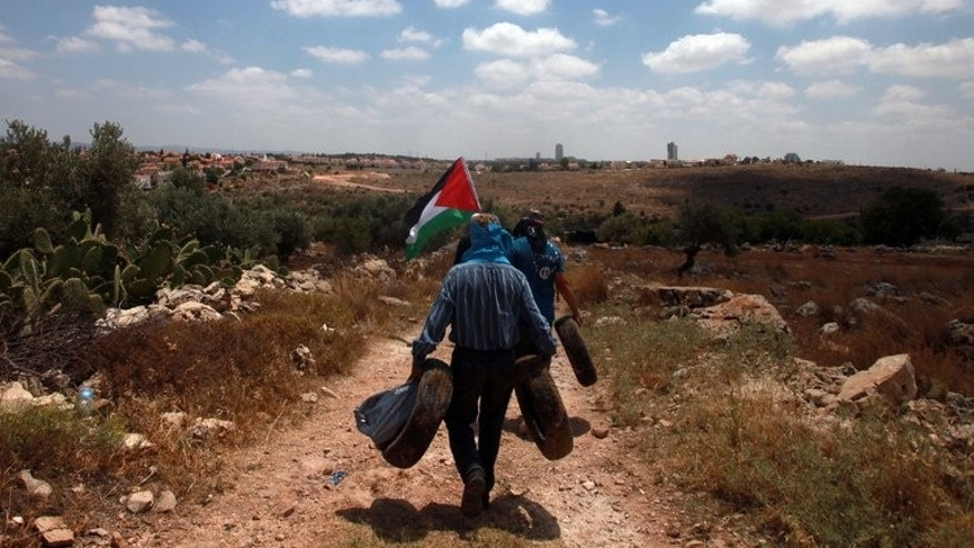 Palestinian protesters demonstrate against Israeli settlements in the West Bank village of Nilin, on June 14, 2013.