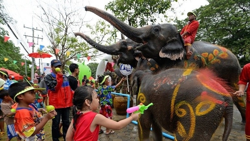 Children take part in water battles with elephants in Ayutthaya province on April 12 during the Songkran Festival. Camps and zoos featuring elephants tightrope-walking, playing football or performing in painting contests employ almost 4,000 domesticated elephants for the amusement of tourists in Thailand.
