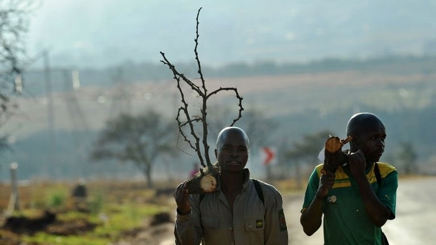 South African mine workers walk home with fire wood in Carletonville on September 3, 2013. A gold miners' strike has ended after workers at Harmony Gold accepted a final wage offer, the country's second-largest producer of the precious metal has said.