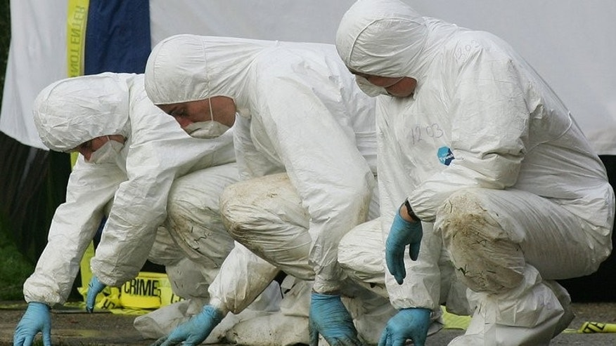 File picture for illustration only shows police forensic officers at a crime scene. A man who lost his whole family in a fire at their home in Leicester spoke of his pain as police arrested five people in relation to the blaze.