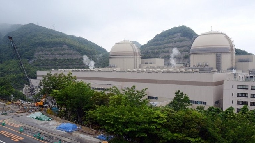 Units 3 and 4 of the Oi nulcear power plant in Japan, pictured on June 15, 2013.