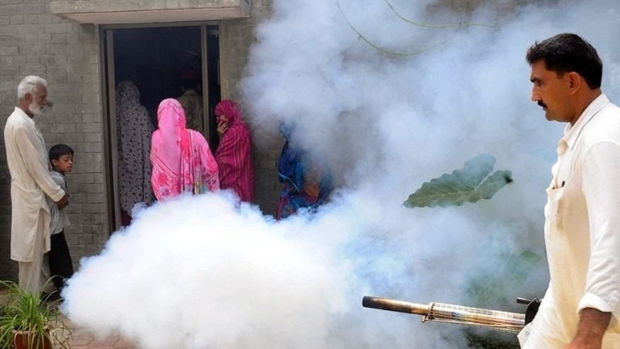 A Pakistani health worker fumigates against the dengue mosquito outside a medical camp in Lahore on September 13, 2011. Authorities in Pakistan's northwestern Swat Valley have declared a health emergency after nearly 5,000 cases of dengue fever were reported in a month.