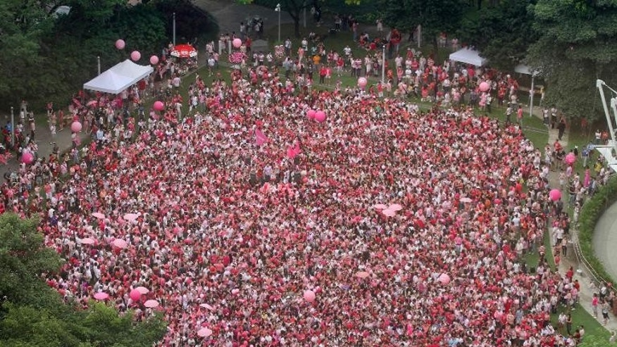 This handout photo made available by 'Pink Dot' on June 18, 2011 shows activists gathered at Hong Lim park in Singapore