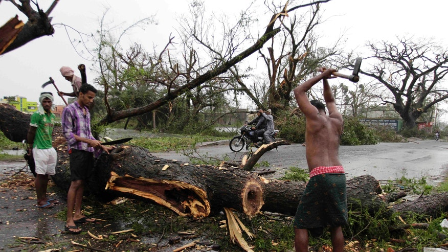 Indian municipal workers cut an uprooted tree from Cyclone Phailin to clear a main highway in Berhampur, India, Sunday, Oct. 13, 2013. An immense, powerful cyclone that lashed the Indian coast, forcing 500,000 people to evacuate and causing widespread damage, weakened Sunday after making landfall. Several people died in the rains that fell ahead of the storm, most killed by falling branches, Indian media reported, but the situation on the ground in many areas was still unclear after Cyclone Phailin slammed into the coast Saturday evening in Orissa state, where power and communications lines were down along much of the coastline. (AP Photo/Bikas Das)