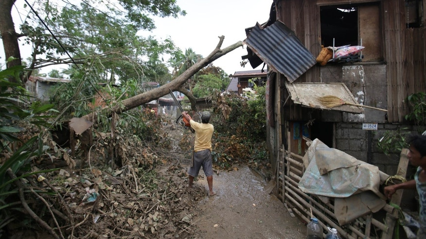 A Filipino uses a chainsaw to cut toppled trees after typhoon Nari hit San Miguel town, Bulacan province, northern Philippines on Sunday, Oct. 13, 2013. The typhoon flooded villages and farms in the Philippines' major rice-growing region and has killed at least 13 people, officials said.  (AP Photo/Aaron Favila)