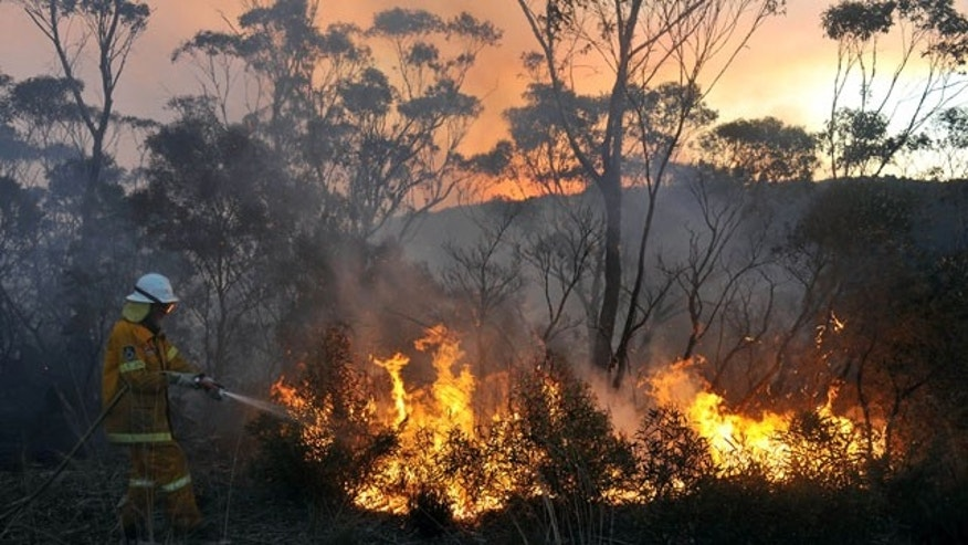 October 20, 2013: A New South Wales Rural Fire Service volunteer puts out a fire in the town of Bell, Australia, on Sunday. (AP Photo)
