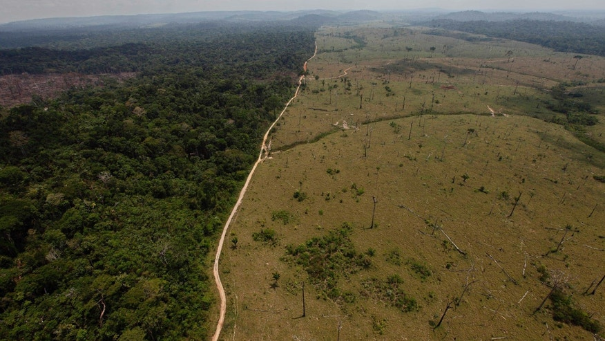 FILE - This Sept. 15, 2009 file photo shows a deforested area near Novo Progresso in Brazil's northern state of Para. Brazil's government says destruction of its Amazon rainforest has jumped by 28 percent. The sharp jump in deforestation came in the August 2012 through July 2013 period, the time when Brazil measures the annual destruction of the forest. (AP Photo/Andre Penner, File)