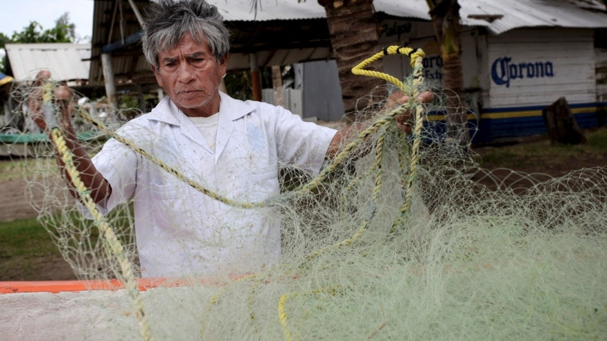 In this Nov. 9, 2013 photo, fisherman Raul Hurtado, 64, checks his nets outside of his small shack where he sells seafood in the port city of Veracruz, Mexico. Hurtado is a local legend, the man who found and lost millions of dollars' worth of Aztec gold almost four decades ago, was tossed in prison, then found peace making $150 a month selling octopus and other seafood from a thatched-roof shack. (AP Photo/Felix Marquez)