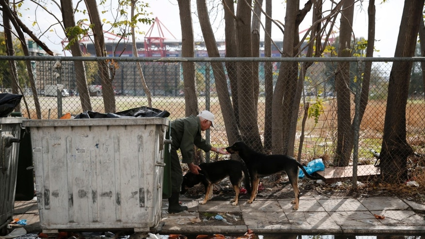 A man feeds stray dogs from a trash bin, in Piraeus, near central Athens, on Thursday, Nov. 14, 2013. Greece's recession eased in the third-quarter of the year, while the unemployment rate stood at 27.3 percent in August, unchanged from the previous month. Seen in the background is Karaiskaki stadium where Greece's national football team will play Romania Friday in playoffs for the 2014 World Cup. (AP Photo/Petros Giannakouris)