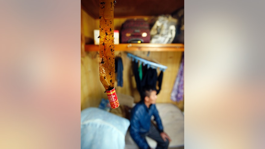 In this May 17, 2013 photo, a fly ribbon is hung near the bed of a 21-year-old Chinese laborer at his dormitory in Hokota, Ibaraki prefecture, north of Tokyo. Caught between Japan's shrinking workforce and tight restrictions on immigration, employers such as small companies, farms and fisheries are relying on foreign interns from China, Vietnam and other countries under a program set up to transfer technical expertise to developing countries, but which critics say is abused by some employers seeking a source of cheap labor. (AP Photo/Koji Sasahara)
