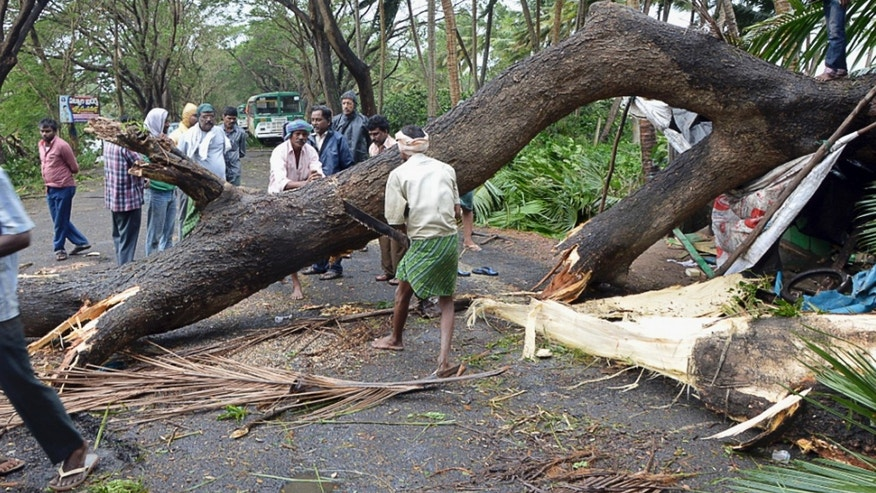 Indian men cut an uprooted tree from Cyclone Helen to clear a road in West Godavari district in Indian southern state of Andhra Pradesh, India, Friday, Nov. 22, 2013. The cyclone knocked out power to hundreds of villages in southern India and killed several people Friday. (AP Photo)