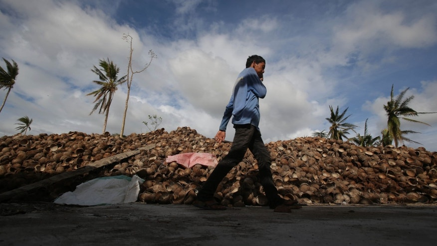 In this Wednesday Nov. 20, 2013 photo, a typhoon survivor walks past coconut shells  which will be used for charcoal at a coconut farm in Tanuan, Leyte, central Philippines. As Typhoon Haiyan tore across the eastern Philippines, coconut plantations older than the fathers of the men who tend them were smashed like matchsticks and call centers that field customer service gripes from around the world fell silent. (AP Photo/Aaron Favila)