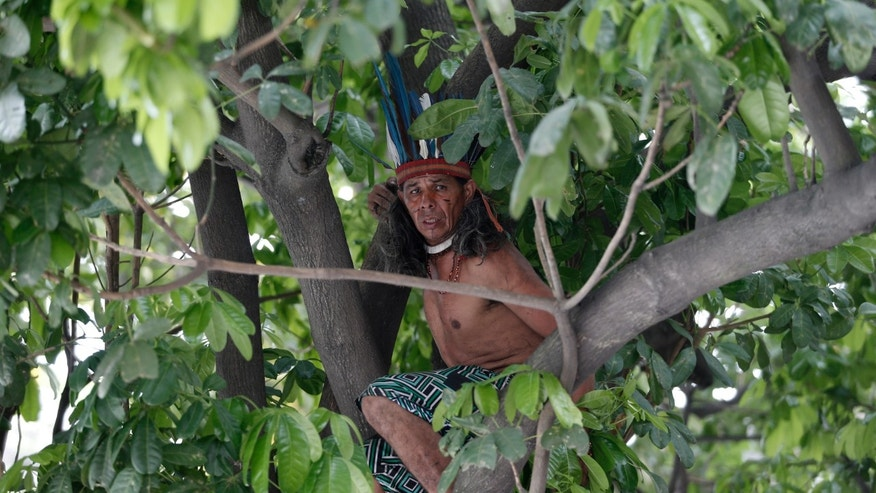 An indigenous man stays at a tree inside the old Indian Museum, next to the Maracana Stadium, during a protest in Rio de Janeiro, Monday, Brazil, Dec. 15, 2013. The Indian museum has been at the center of a drawn-out legal battle between the several dozen indigenous who had been living there for years and state and local authorities. Officials initially wanted to raze the complex as part of renovations ahead of Brazil's 2014 World Cup. (AP Photo/Silvia Izquierdo)