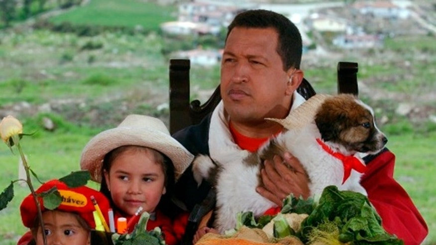 "FILE - In this May 18, 2003 file photo released by Miraflores Press Office, Venezuela's President Hugo Chavez holds a mucuchies pup during his radio and television show ""Hello President"" in Mucuchies, near Merida, Venezuela. The dog known as mucuchies, or Venezuelan sheepdog, was rescued from near-extinction and historical oblivion by Chavez and is now on its way to being internationally recognized as an official canine breed. (AP Photo/Miraflores Press Office, File)"