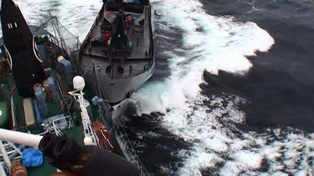 Japanese whaling vessel, protest ship collide in icy waters off Antarctica