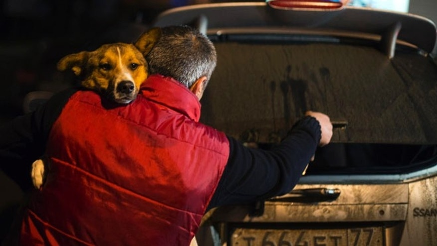 Feb. 11, 2014: Animal activist Igor Airapetian carries a stray dog to his car brought out of Sochi by fellow activist at a rendezvous point 75 miles away from the Olympic area in the early morning hours of Tuesday, in Tuapse, Russia. Airapetian is one of a dozen people in the emerging movement of animal activists in Sochi alarmed by reports that the city has contracted the killing of thousands of stray dogs before and during the Olympic Games.