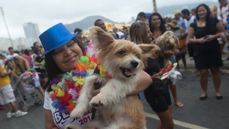"People dance with their dogs dressed for carnival, during the ""Blocao"" dog carnival in Rio de Janeiro, Brazil, Sunday, Feb. 16, 2014. About 100 dogs have had their day at a pre-Carnival bash in Rio de Janeiro. A 10-man brass band and a singer belting out Rio's anthem song ""Cidade Maravilhosa"" (Marvelous City) kicked off the four-footed fest as dog owners gathered to party down with pooches on Copacabana beach Sunday. (AP Photo/Silvia Izquierdo)"