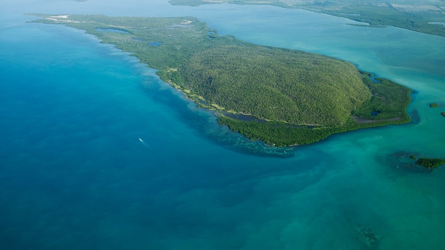 In this Jan. 21, 2014 photo, shows the uninhabited, mangrove-fringed Goat Islands in southern Jamaica.  A skirmish has been brewing between the Jamiacan government and the conservation lobby over a transshipment port to be developed by state-run China Harbor Engineering Co. that is planned for the uninhabited Goat Islands in a swath of the island's biggest protected area. (AP Photo/Jamaica Environment Trust, Jeremy Francis)